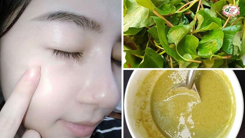 3 Cách làm mặt nạ rau diếp cá trị mụn hiệu quả tại nhà, siêu tiết kiệm !