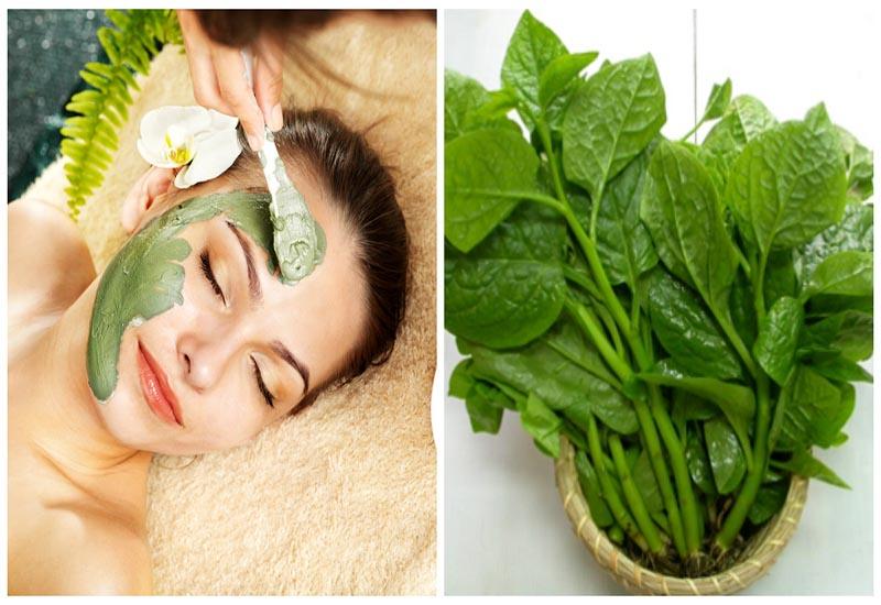 Trắng da, hết mụn bằng mặt nạ rau mồng tơi hiệu quả cao, dễ thực hiện !